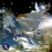 Twilight 005 – 1096005 – Dutch Edition